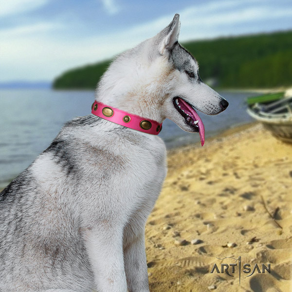 Siberian Husky awesome decorated natural leather dog collar for handy use
