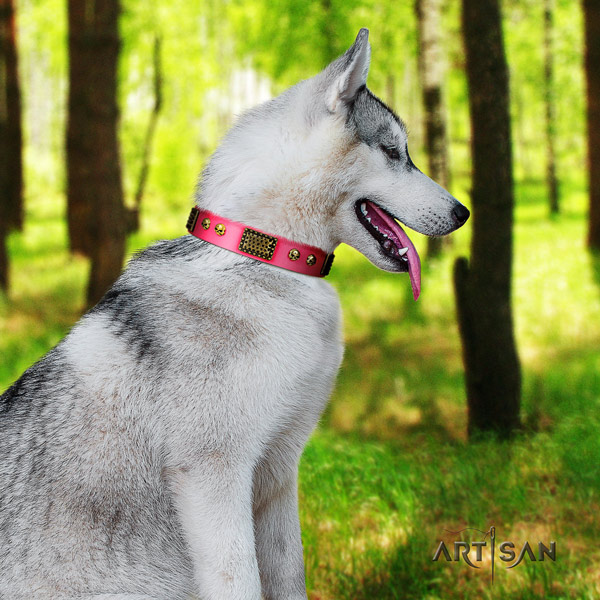 Siberian Husky unique adorned full grain genuine leather dog collar for comfortable wearing