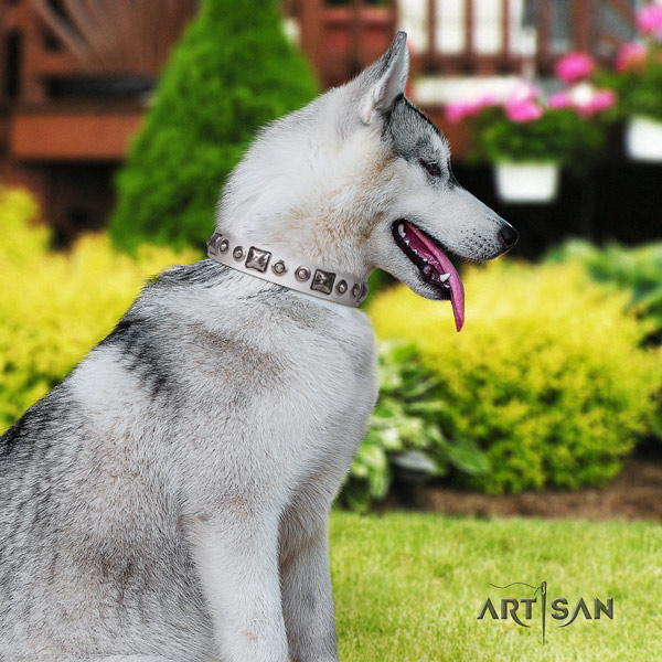 Siberian Husky exquisite studded genuine leather dog collar