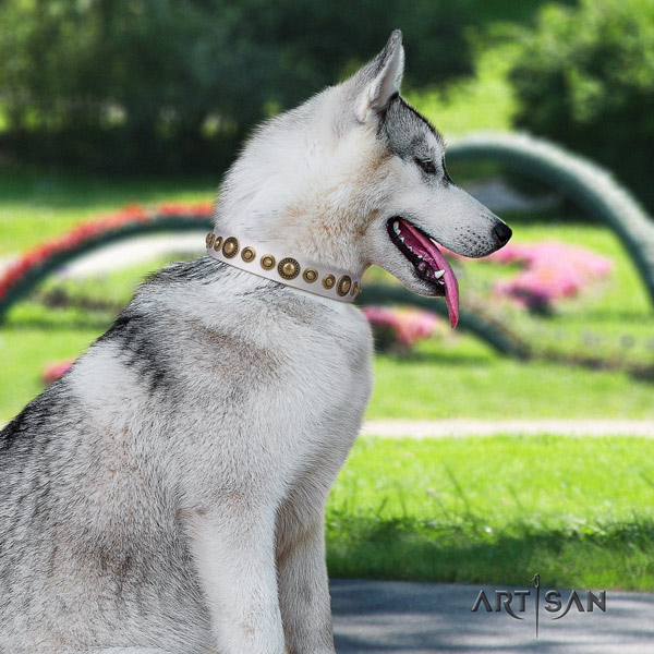 Siberian Husky stunning adorned full grain natural leather dog collar