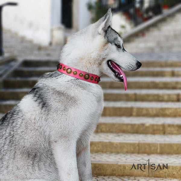 Siberian Husky stylish design embellished natural genuine leather dog collar