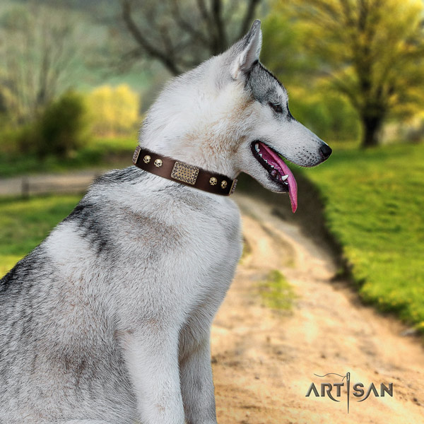 Siberian Husky exquisite adorned full grain leather dog collar