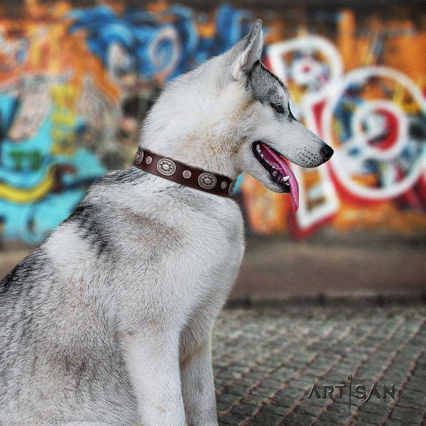Siberian Husky impressive decorated natural genuine leather dog collar