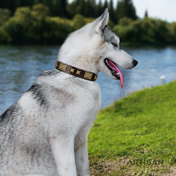 Siberian Husky unique adorned full grain leather dog collar