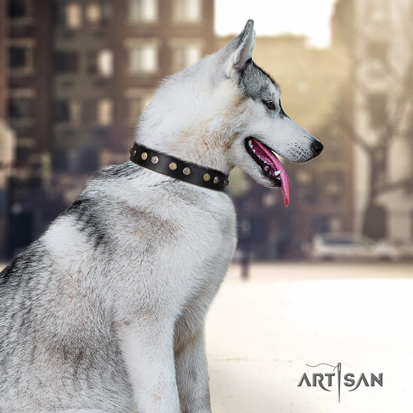 Siberian Husky trendy adorned natural genuine leather dog collar