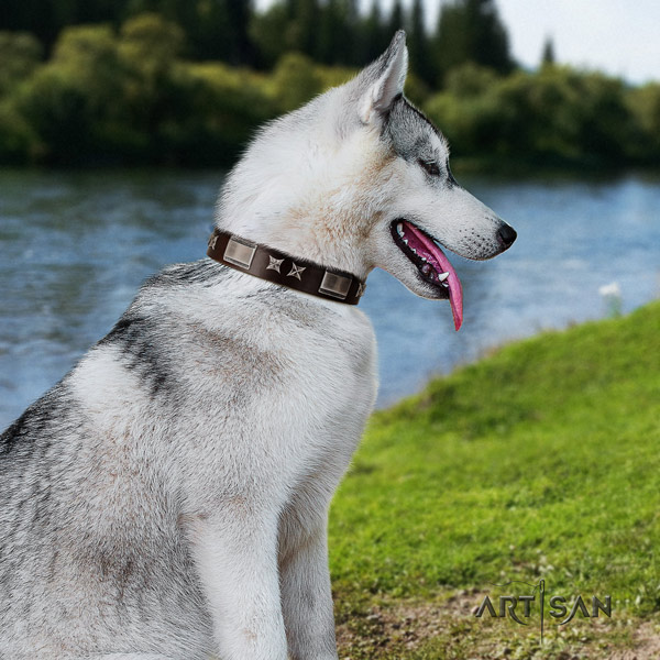 Siberian Husky trendy embellished leather dog collar for everyday walking