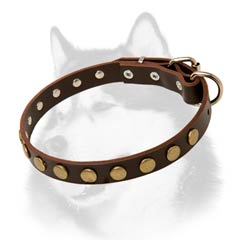 Siberian Husky leather dog collar with beautiful brass  adornment