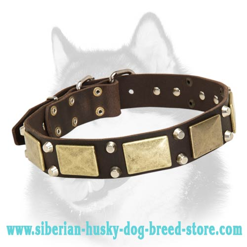 Siberian Husky leather dog collar with plates and cones