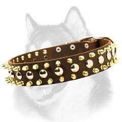 Siberian Husky leather dog collar with shiny decoration