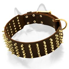 Siberian Husky leather dog collar with numerous spikes decoration