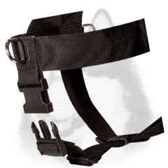 Easy-to-use Siberian Husky nylon harness