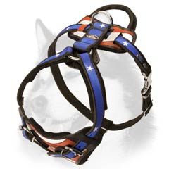Husky leather harness with patriotic painting