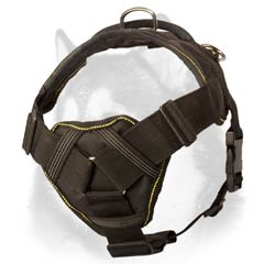 Siberian Husky breed nylon dog harness with cushioned  chest plate