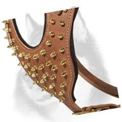 Siberian Husky leather dog harness with luxurious brass  spikes