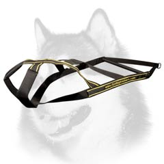 Siberian Husky nylon dog harness for weight pulling