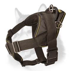 Siberian Husky nylon dog harness with comfortable  handle