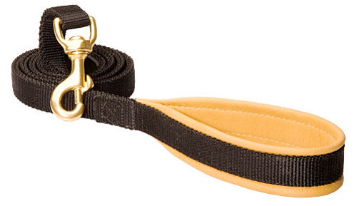 Stylish Nylon dog leash