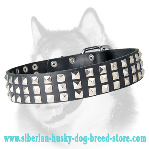 Silver Pyramid Leather Dog Collar for Siberian Husky
