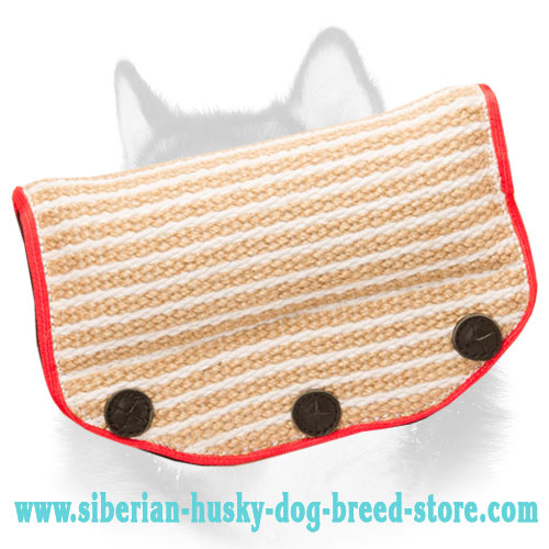 Reliable Jute Siberian Husky Bite Builder