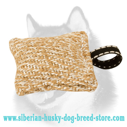 Small Jute Bite Tug for Siberian Husky Puppy