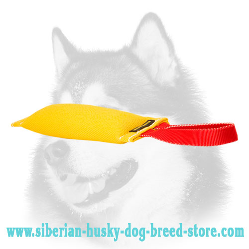 Siberian Husky Bite Tug of French Linen with Handle