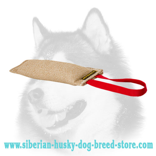 Siberian Husky Bite Tug of Jute with Handle