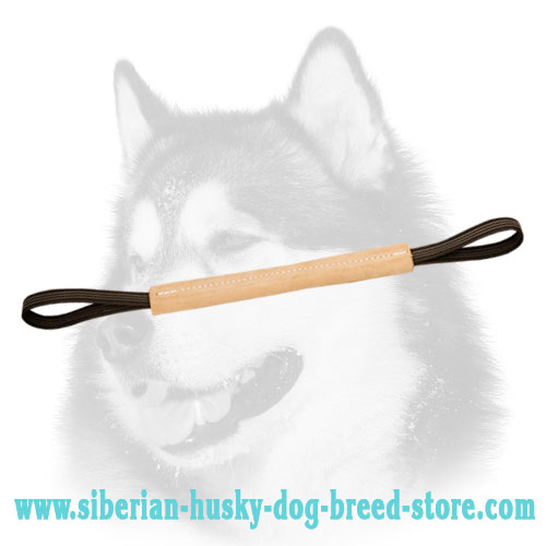 Hard leather pocket toy with two handles for Siberian Husky