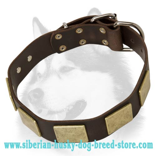 Awesome Leather Siberian Husky Collar with Massive Plates