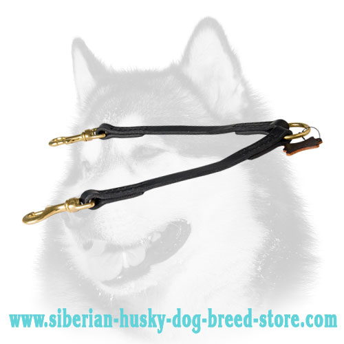 Siberian Husky Leather Dog Coupler Lead for 2 Dogs Easy Walk