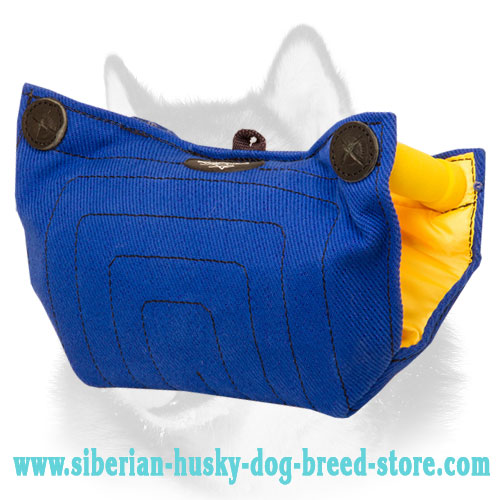 French Linen Siberian Husky Puppy Bite Builder