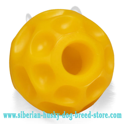 Treats Dispensive Dog Ball for Siberian Husky - Small