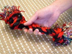 Play with your Husky with Super Useful 2-Knot Fiber Bone