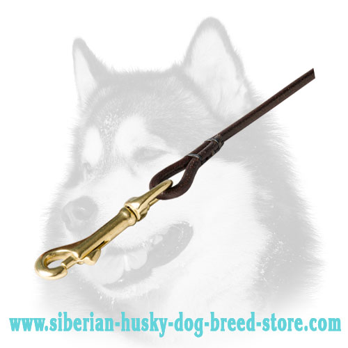 Brass plated snap hook of sturdy Siberian Husky leather lead