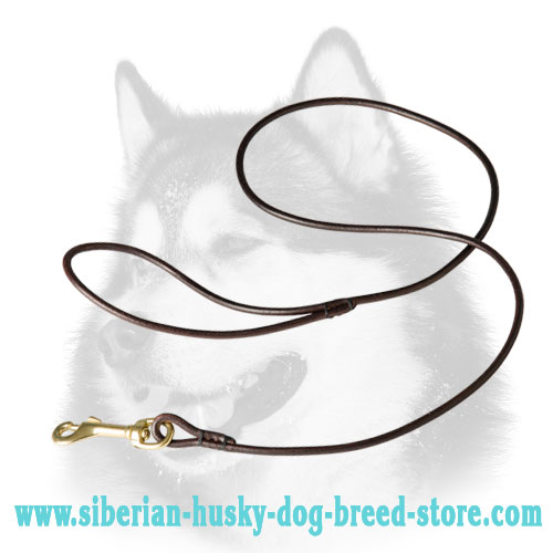 Leather leash for Siberian Husky for dog show
