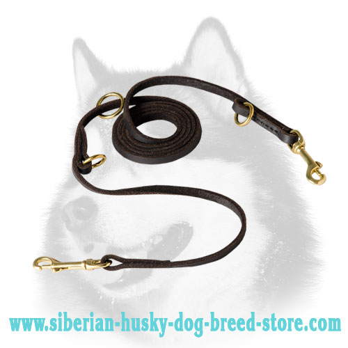 Multitasking leather dog leash for Siberian Husky