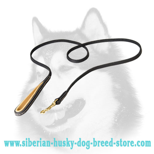 Narrow leather dog leash for Siberian Husky