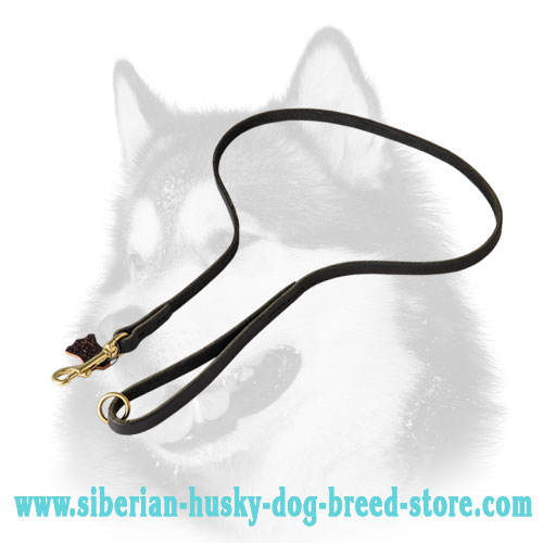Reliable leather dog leash for Siberian Husky