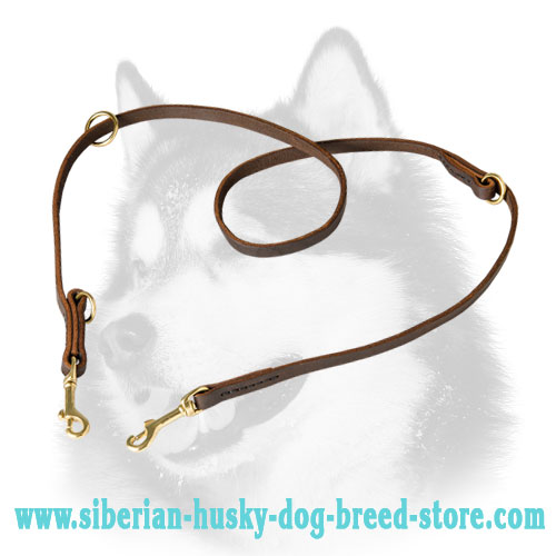 Multipurpose leather dog leash for Siberian Husky