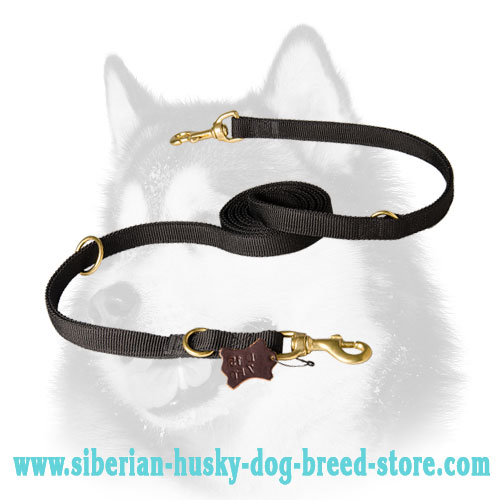 Multitasking nylon dog leash for Siberian Husky