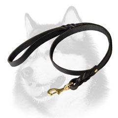 Leather leash with brass plated snap hook