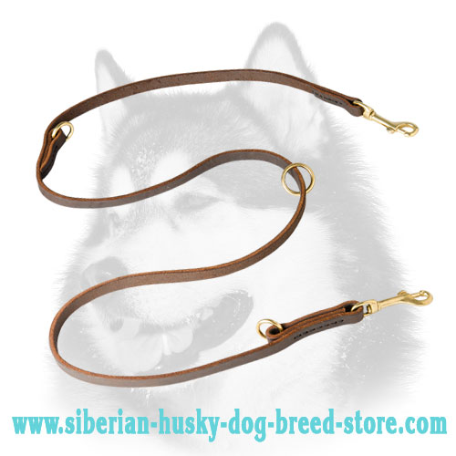 Adjustable leather Siberian Husky leash