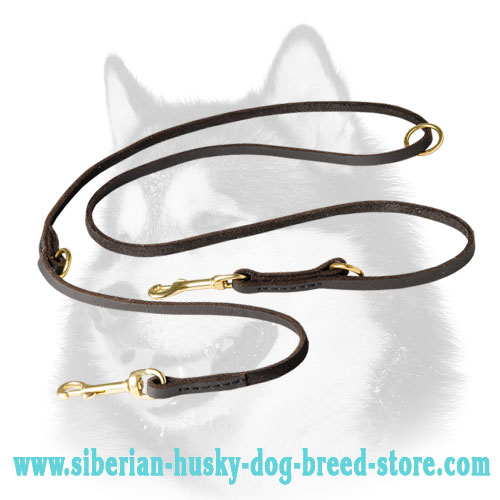 Multimode leather Siberian Husky leash