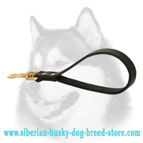 Short control leather Siberian Husky leash