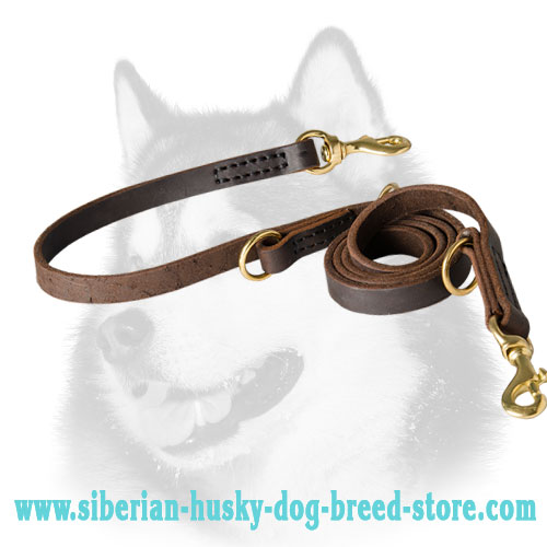 Multitasking leather Siberian Husky leash