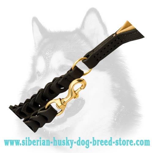 Siberian Husky leather dog leash with brass fittings