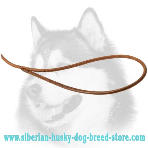 Siberian Husky leather dog leash with loop for handling