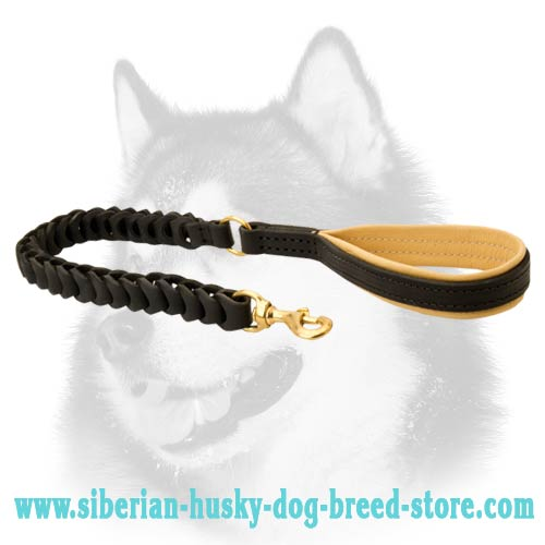Siberian Husky leather leash non pulling