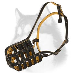 Leather basket muzzle for Husky