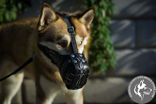 Handpainted genuine leather muzzle