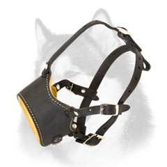 Siberian Husky adjustable leather muzzle